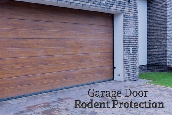 How To Keep Rodents Out Of A Garage Action Garage Door